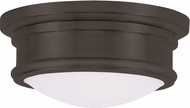 Livex 7341-07 Astor Bronze 11  Home Ceiling Lighting