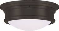 Livex 7342-07 Astor Bronze 13  Ceiling Light