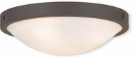 Livex 73952-07 New Brighton Bronze 16.5  Home Ceiling Lighting