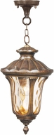 Livex 7654-50 Oxford Traditional Moroccan Gold 9.5 Drop Lighting