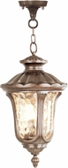 Livex 7658-50 Oxford Traditional Moroccan Gold 11  Drop Ceiling Lighting