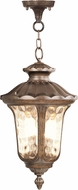 Livex 7665-50 Oxford Traditional Moroccan Gold 13.75  Ceiling Light Pendant