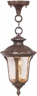Livex 7668-50 Oxford Traditional Moroccan Gold 7.25 Ceiling Pendant Light