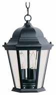 Maxim 1009BK Westlake Traditional Black 9  Wide Outdoor Pendant Lighting