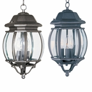 Maxim 1036 Crown Hill 8  Wide Exterior Pendant Light