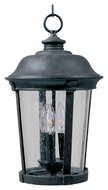 Maxim 3028CDBZ Dover DC Traditional Bronze 10  Wide Exterior Hanging Pendant Lighting