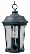 Maxim 3029CDBZ Dover DC Traditional Bronze 20  Tall Outdoor Hanging Pendant Light