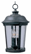 Maxim 40099CDBZ Dover VX Traditional Bronze 20  Tall Outdoor Lighting Pendant