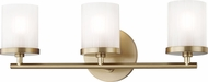 Mitzi H239303-AGB Ryan Modern Aged Brass Xenon 3-Light Bathroom Sconce