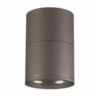PLC 2048BZ Troll Contemporary Bronze Exterior Ceiling Light Fixture