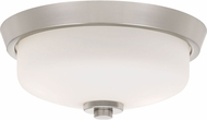 Quoizel QF3414BN Contemporary Brushed Nickel Ceiling Light Fixture