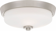 Quoizel QF3415BN Contemporary Brushed Nickel Ceiling Light Fixture