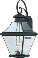 Quoizel RJ8414K Rutledge Mystic Black Outdoor 13.5  Wall Lamp