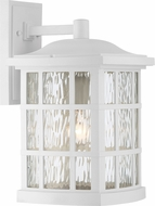 Quoizel SNN8409WFL Stonington Fresco Fluorescent Outdoor 9.5  Lighting Sconce