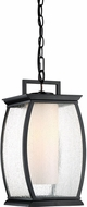 Quoizel TRE1909K Terrace Contemporary Mystic Black Outdoor Drop Ceiling Light Fixture