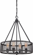 Quoizel WLR2820MB Wilder Vintage Mottled Black Drum Drop Ceiling Lighting