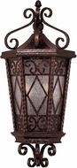 Savoy House 5-425-56 Felicity Traditional New Tortoise Shell Outdoor Wall Sconce