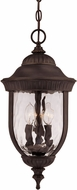 Savoy House 5-60328-186 Castlemain Traditional Black w/ Gold Outdoor Hanging Pendant Light