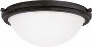 Seagull 75661EN-839 Winnetka Blacksmith LED Flush Ceiling Light Fixture