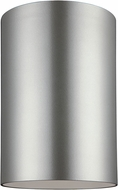 Seagull 7813901-753 Outdoor Bullets Contemporary Painted Brushed Nickel Outdoor Flush Mount Lighting Fixture