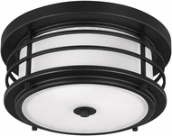 Seagull 7824452EN-12 Sauganash Contemporary Black LED Outdoor Ceiling Light