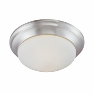 Thomas Lighting 190035217 Ceiling Essentials Brushed Nickel Finish 4.75  Tall Ceiling Lighting Fixture