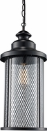 Trans Globe 40745-BK Stewart Black Exterior 16  Drop Ceiling Lighting