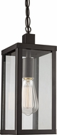 Trans Globe 40756-BK Oxford Black Exterior Ceiling Pendant Light