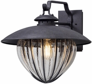 Troy B5042 Murphy Retro Vintage Iron Exterior Medium Wall Light Fixture