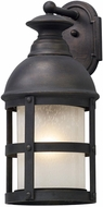 Troy B5153 Webster Vintage Bronze Outdoor Large Wall Lamp