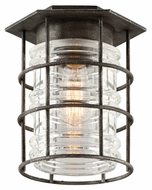 Troy C3799 Brunswick Aged Pewter Finish 10.25  Tall Outdoor Ceiling Light