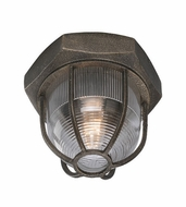 Troy C3890 Acme Retro Aged Silver Finish 8.5 Wide Ceiling Lighting Fixture