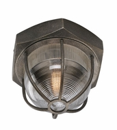 Troy C3891 Acme Vintage Aged Silver Finish 10.75 Tall Ceiling Light Fixture