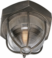Troy CL3891 Acme Hand-Worked Iron LED Ceiling Lighting Fixture