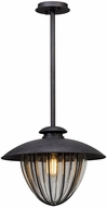 Troy F5047 Murphy Retro Vintage Iron Exterior Medium Pendant Lighting