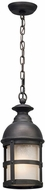 Troy F5157 Webster Vintage Bronze Exterior Hanging Pendant Lighting