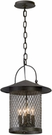 Troy F5177 Altamont French Iron Exterior Pendant Hanging Light