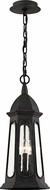 Troy F6367 Astor Traditional Vintage Iron Exterior Hanging Pendant Lighting