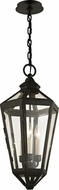 Troy F6377 Calabasas Traditional Bronze Outdoor Hanging Pendant Light
