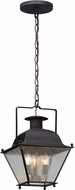 Troy FL5077CI Wellesley Charred Iron LED Exterior Drop Lighting Fixture
