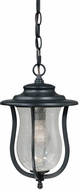 Vaxcel T0011 Corsica Traditional Oil Rubbed Bronze Finish 13.75 Tall Exterior Mini Hanging Lamp