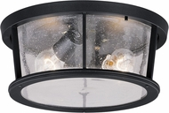 Vaxcel T0097 Coventry Dark Bronze  Outdoor Home Ceiling Lighting