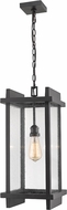 Z-Lite 565CHB-BK Fallow Contemporary Black Outdoor Drop Ceiling Lighting