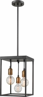 Z-Lite 8001-14BRZ Troubadour Modern Bronze 10  Foyer Lighting Fixture