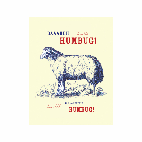 Bah Humbug Holiday Card