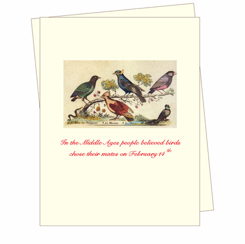 V-Day Day Bird Mates Card