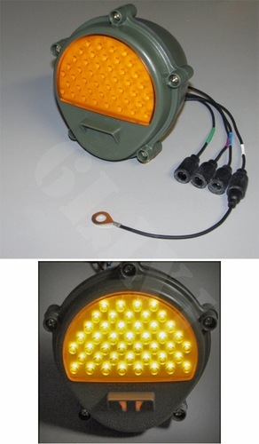 Front Composite Light LED (383-Green Housing), 12422957