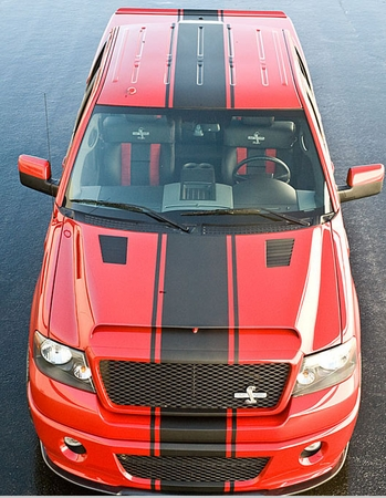 2005-2008 Ford F150 Shelby Supersnake Hood F-150 Truck