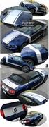 2005-2010 Ford Mustang Boss 302 Style Retro Graphics Kit 1