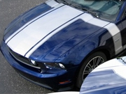 2010-2014 Mustang 302 Boss Style Graphics Kit